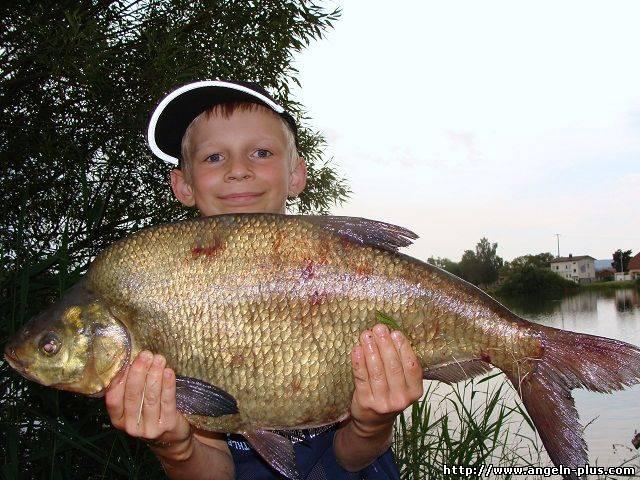 штраф за рыбалку без лицензии
